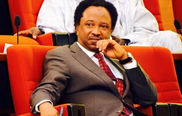 Senator Shehu Sani resigns from APC