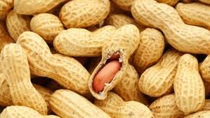 #8 Nutrition and Health benefits of Peanuts or groundnuts