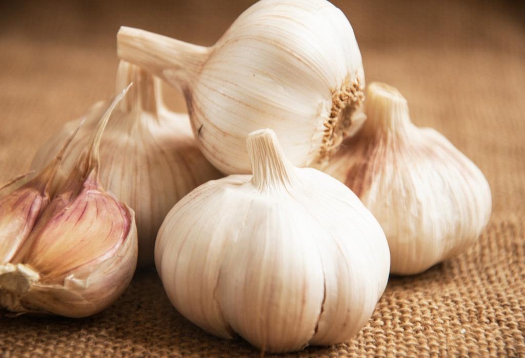 16 Health Benefits of Garlic