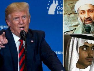 Hamza bin Ladin and donald trump