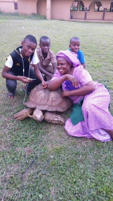 oldest tortoise in Africa